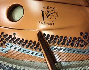 Bösendorfer - montueux - facteur de piano - duplex scale - julien vernaz - bosendorfer suisse romande